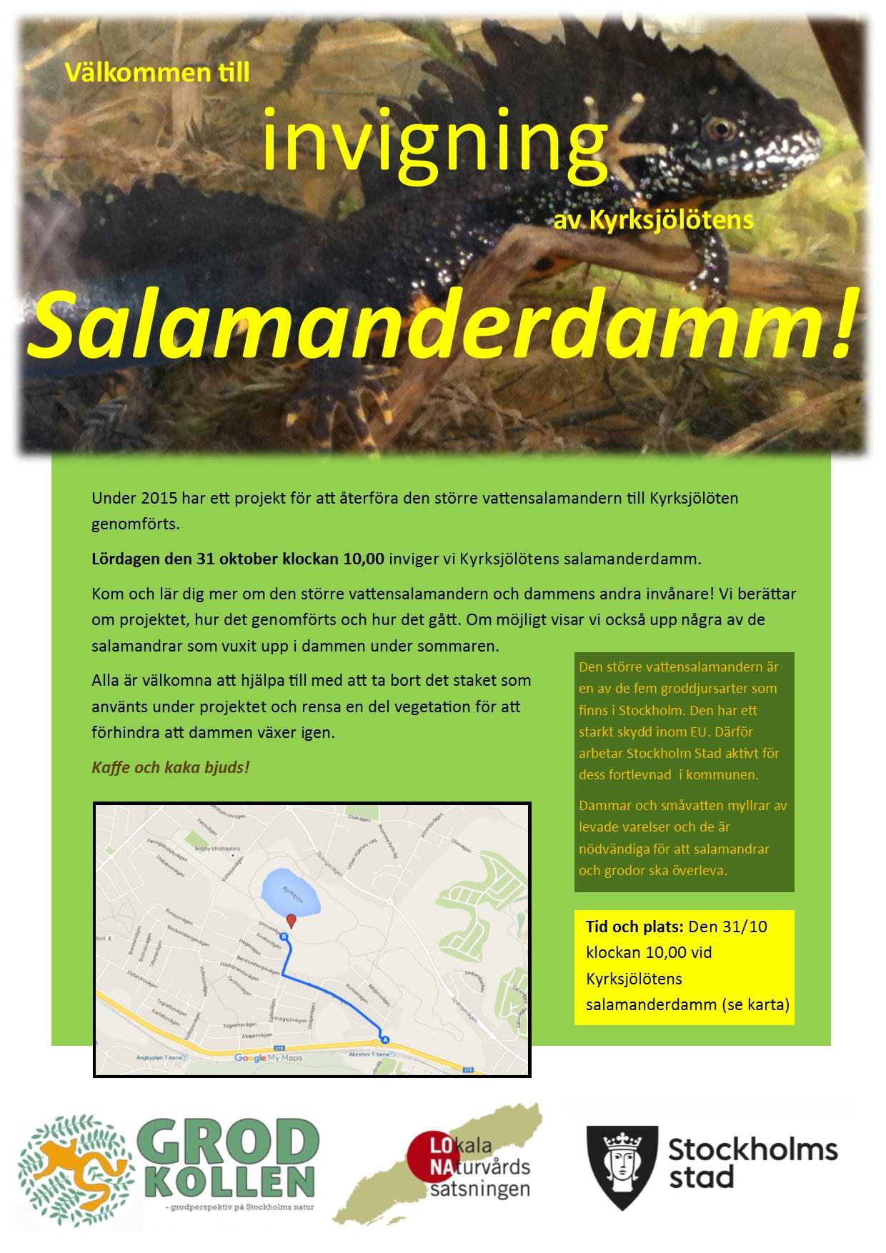 salamanderdag20151031